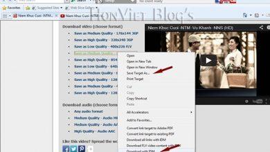 Thủ thuật HonVietBIZ | Thủ thuật download Video trên YouTube