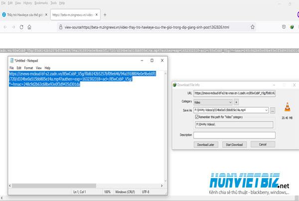 Thủ thuật HonVietBIZ | Hướng dẫn download video trên trang Zingnews
